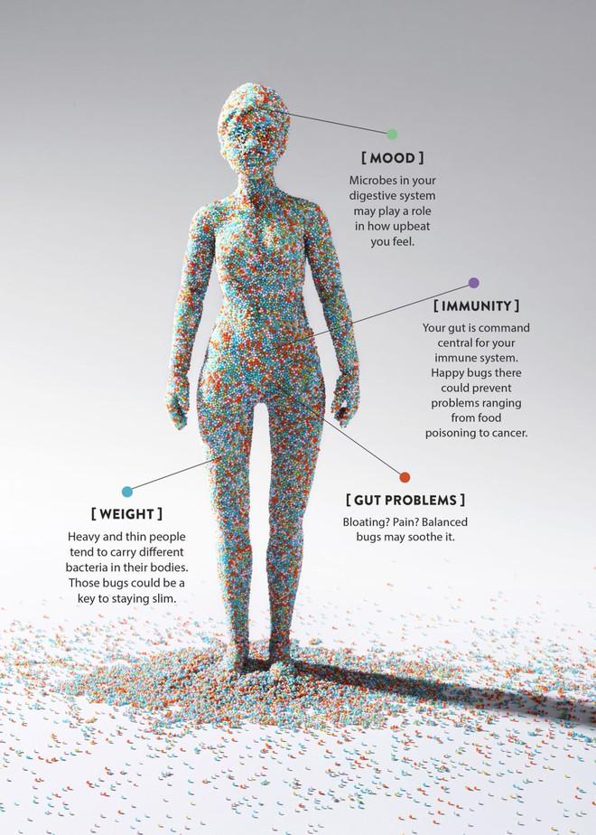 Mỗi chúng ta đều mang trên mình khoảng 38 nghìn tỷ tế bào vi sinh vật