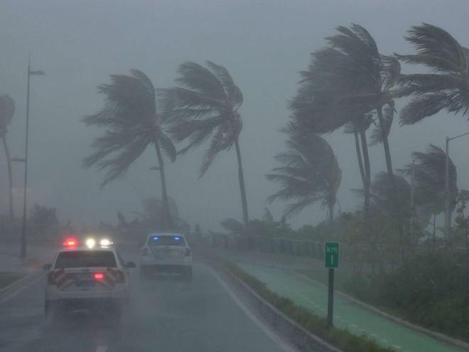Cơn bão Irma đổ bộ nước Mỹ