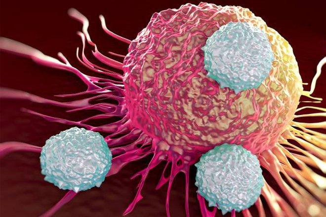 CAR-T hiện chỉ tỏ ra hiệu quả cao với các dạng ung thư máu. Ung thư có các khối u rắn sẽ là một thách thức với phương pháp này