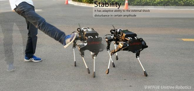 Công ty công nghệ Trung Quốc ra mắt chó robot vận chuyển, khẳng định không phải hàng nhái - Ảnh 1.