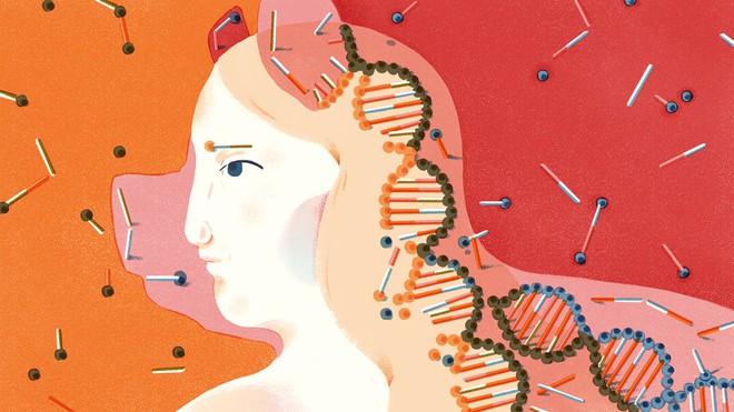 Nếu chúng ta cấy được các cơ quan động vật vào con người, điều này có thay đổi định nghĩa về con người?