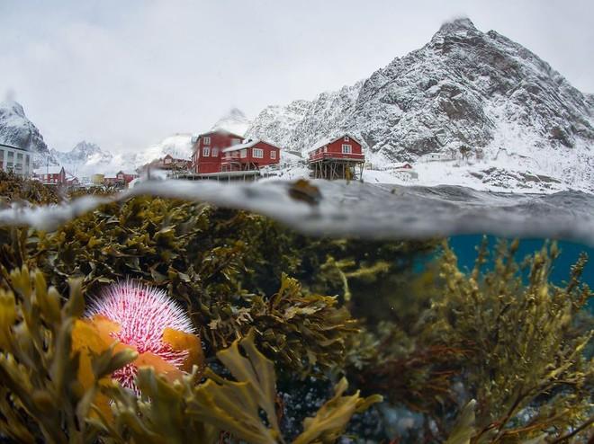 Đảo Lofoten, Na Uy hiện ra một cách vô cùng độc đáo và tự nhiên dưới góc máy của nhiếp ảnh gia Sergey Lukankin