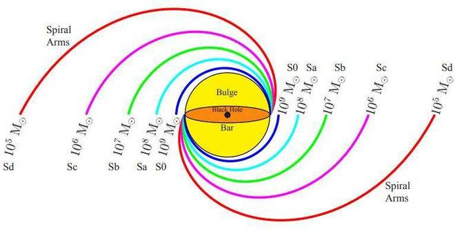 Các nhánh xoắn ốc với các mức độ chặt khác nhau, và các khối lượng lỗ đen trung tâm và thiên hà tương ứng trong các đơn vị khối lượng của thiên hà chúng ta. Mẫu này có thể được dùng để ước lượng các khối lượng lỗ đen trong thiên hà xoắn.