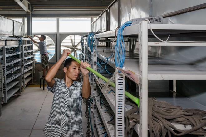 Các công nhân đang vệ sinh những kệ gắn máy đào bitcoin