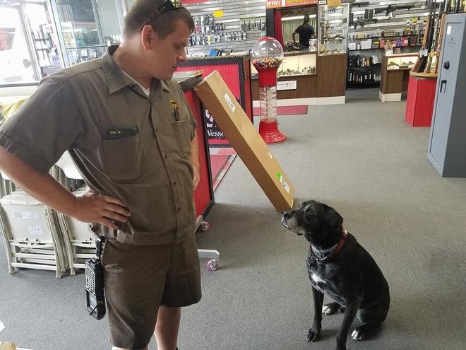 Hình ảnh McCarren đang làm quen một chú chó của khách hàng