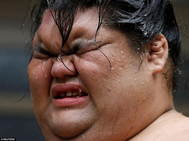 Đấu sĩ vật sumo, hay còn được biết đến với cái tên rikishi, phải dành hơn 3 giờ mỗi buổi sáng để tập luyện.
