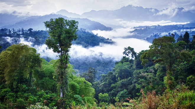 Những đám mây bao quanh rừng Amazon