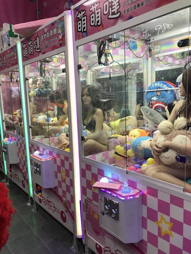 Đài Loan: Cho người mẫu bikini ngồi trong máy gắp thú bông để thu hút người chơi - Ảnh 7.