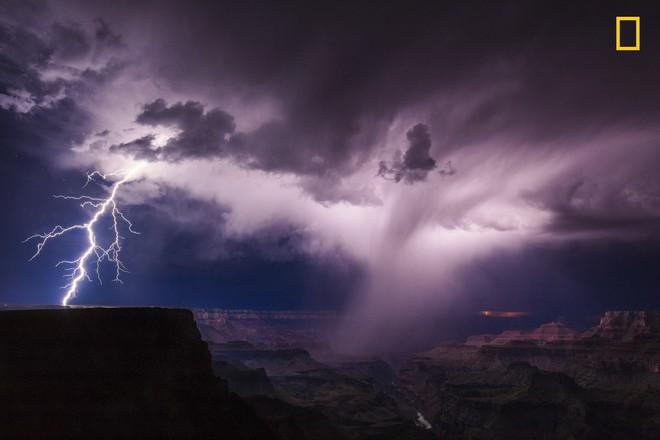 [Ảnh] National Geographic công bố kết quả cuộc thi Nhiếp ảnh gia Thiên nhiên 2017 - Ảnh 7.