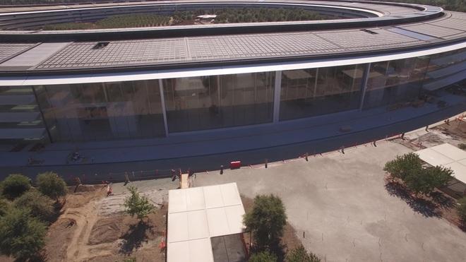 Apple Park được thiết kế với những của kính cao bằng 4 tầng tòa nhà, mở ra một không gian rộng khổng lồ