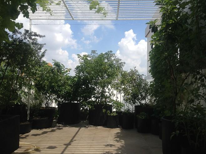 Ngôi nhà 42m2 kỳ lạ ở Sài Gòn: Bên ngoài tưởng kín như hũ nút, bên trong thoáng mát rộng mở thênh thang - Ảnh 9.