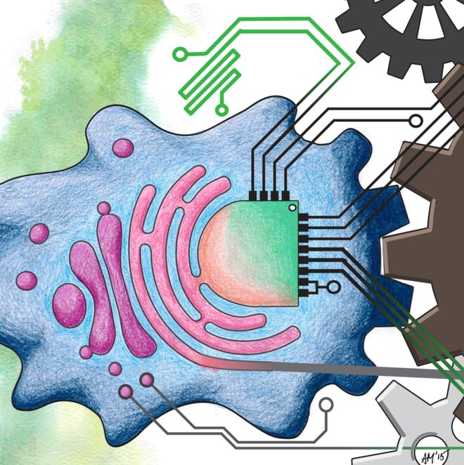 Một kỷ nguyên điện tử trong sinh vật sống, không mạch kim loại và không vật liệu bán dẫn