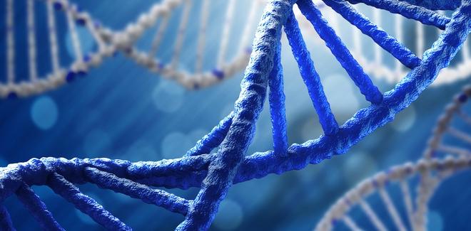 DNA tối trong các loài sinh vật đang nắm giữ nhiều bí ẩn của sự sống?