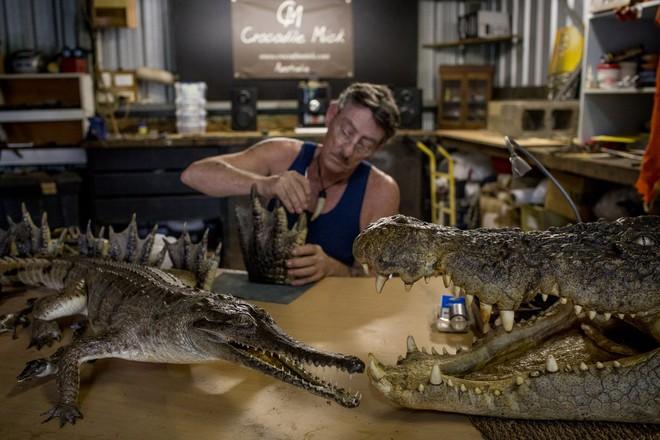 Mick Pitman, một thợ săn và cũng là một người nhồi bông cá sấu.