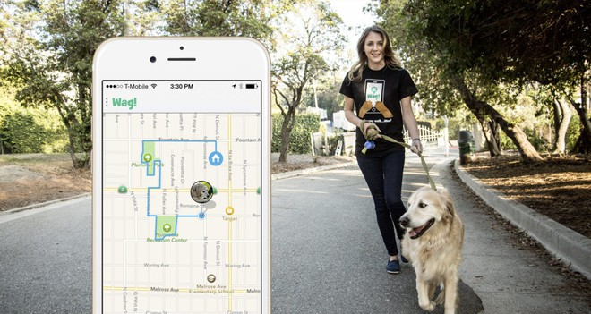Softbank đầu tư 300 triệu USD vào startup cung cấp dịch vụ dắt chó đi dạo - Ảnh 2.