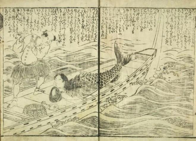Bí ẩn thế giới: Sự thật xoay quanh câu chuyện về Người Cá và những truyền thuyết ít người biết tới (P2) - Ảnh 5.