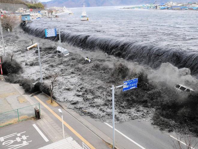 Làm thế nào để chế ngự sóng thần? Có những phương pháp bạn có nằm mơ cũng không nghĩ ra nổi - Ảnh 1.