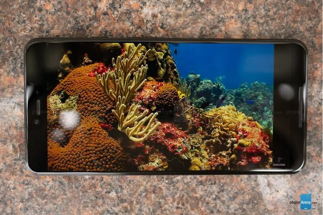 Mổ bụng Google Pixel 3 cho thấy màn hình OLED được sản xuất bởi LG Display, chất lượng không thua kém Samsung - Ảnh 2.