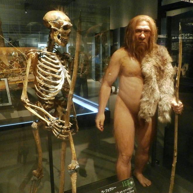 Nhờ quan hệ tình dục với người Neanderthal, người hiện đại mới có thể tồn tại tới bây giờ - Ảnh 1.