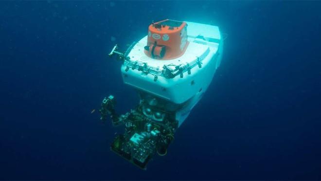 Các nhà khoa học mới tìm ra một rạn san hô khổng lồ lẩn khuất dưới đáy đại dương - Ảnh 2.