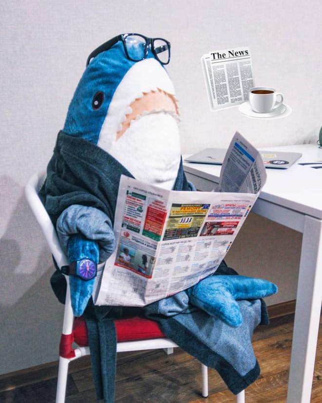 Gặp gỡ Blaha - Chú cá mập nhồi bông đến từ IKEA đang làm náo loạn mạng xã hội thế giới - Ảnh 5.