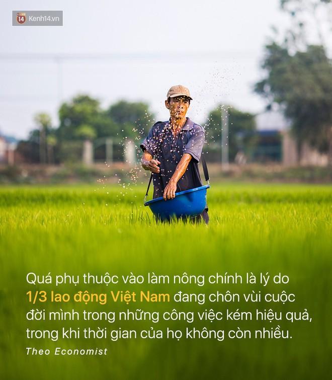 Báo quốc tế đưa tin: Người Việt Nam chưa kịp giàu đã già mất rồi - Ảnh 5.