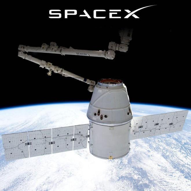 Elon Musk thẳng tay đuổi 7 nhân sự SpaceX vì không đáp ứng được tiến độ phát triển vệ tinh Internet toàn cầu - Ảnh 2.