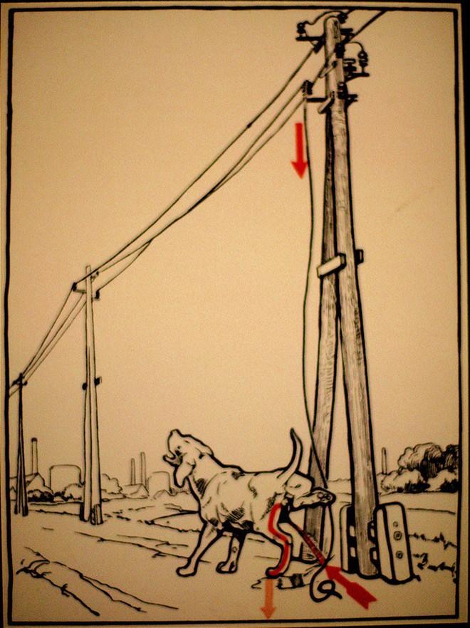 12 cảnh báo chết người khi dùng điện từ năm 1931 cho thấy thế giới đã thay đổi nhiều hơn ta tưởng - Ảnh 3.
