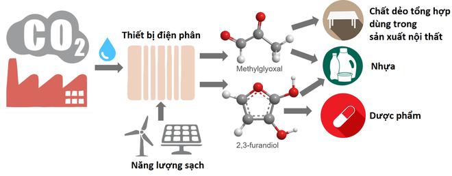 Các nhà khoa học tìm ra chất xúc tác biến carbon dioxide thành loại nhựa an toàn với môi trường - Ảnh 2.