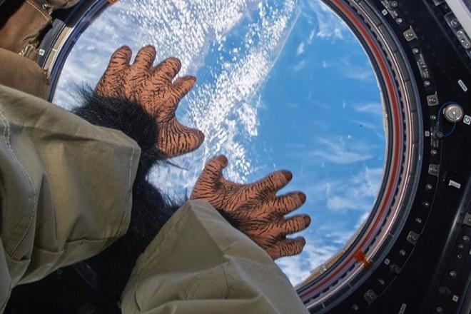 Cận cảnh cuộc sống lơ lửng bên trong trạm vũ trụ quốc tế ISS - Ảnh 8.