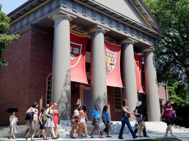 Đột nhập ký túc xá Harvard: Hóa ra sinh viên trường số 1 thế giới lại phải chịu cảnh sống chen chúc, chật chội như vậy - Ảnh 13.