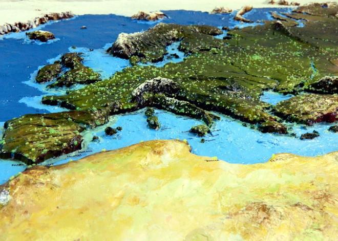 Anh chàng này đã tự làm bản đồ thế giới 3D trên tường chất như nước cất như thế nào? - Ảnh 16.