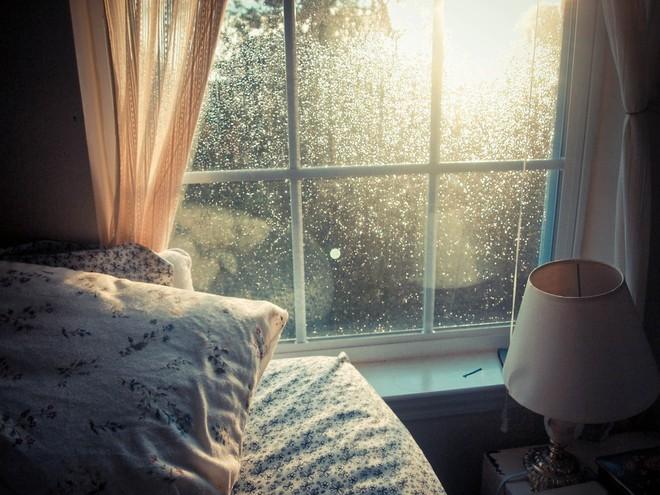 Ánh sáng Mặt Trời sẽ làm giảm lượng vi khuẩn có trong nhà bạn, hãy mở cửa ra để đón nắng! - Ảnh 1.