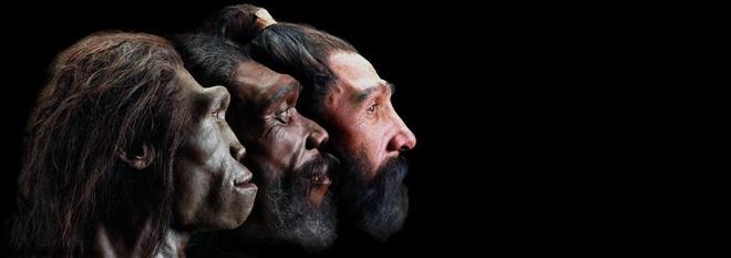 Những sự thật chứng minh con người là giống loài thượng đẳng - Ảnh 35.