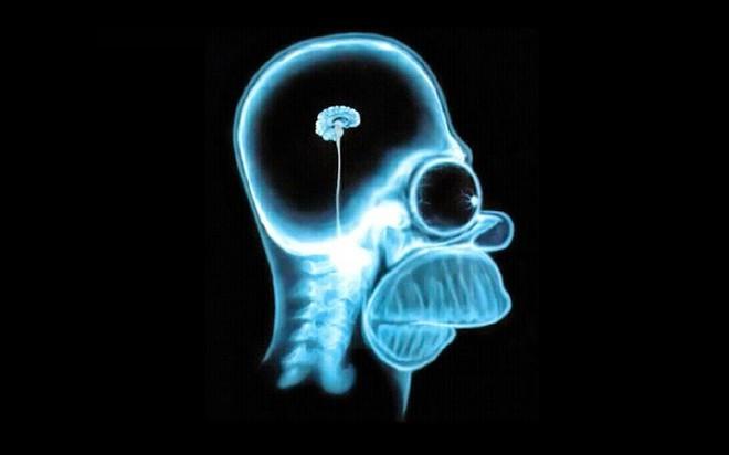 Nghiên cứu mới chỉ ra mối liên hệ giữa stress và teo não - Ảnh 1.