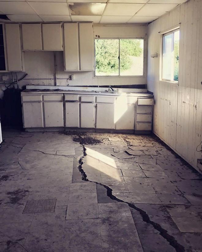 [Ảnh] Vài thứ cực tồi tệ được phát hiện khi kiểm tra kết cấu những căn hộ cũ - Ảnh 3.