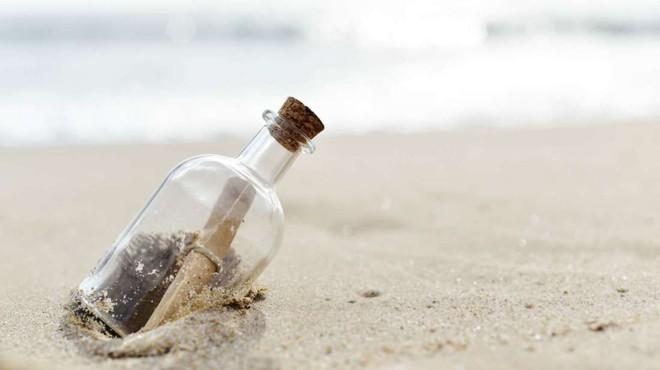 Thả 2000 chai thủy tinh kèm thư làm quen xuống sông để tìm người yêu, anh chàng cô đơn bị cáo buộc phá hoại môi trường - Ảnh 3.