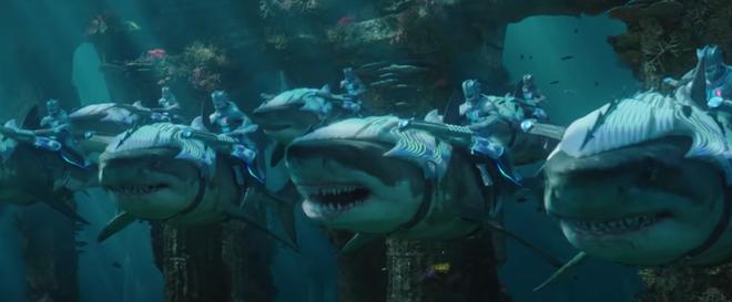 Không chỉ là bộ phim siêu anh hùng, bom tấn Aquaman còn là tiếng lòng của thiên nhiên - Ảnh 3.