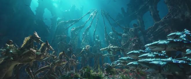 Không chỉ là bộ phim siêu anh hùng, bom tấn Aquaman còn là tiếng lòng của thiên nhiên - Ảnh 4.