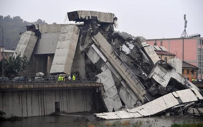 Nhìn lại những thảm họa rúng động thế giới năm 2018 - Ảnh 11.