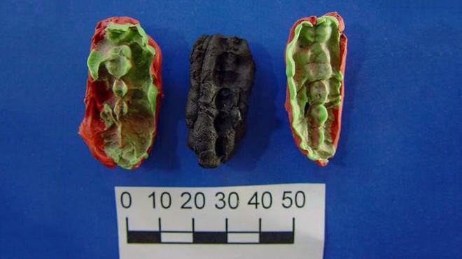 Miếng kẹo cao su 9.500 năm tuổi này có gì thú vị khiến các nhà khoa học nhảy vào nghiên cứu? - Ảnh 1.