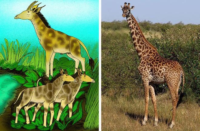 9 loài vật cực quen thuộc này thời xưa lại có ngoại hình dị đến mức không thể tin nổi - Ảnh 3.