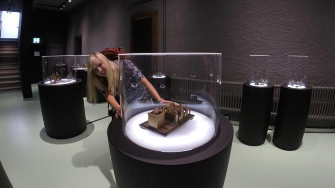 Tham quan bảo tàng ếch độc nhất vô nhị ở Thụy Sĩ với đầy những bất ngờ - Ảnh 1.