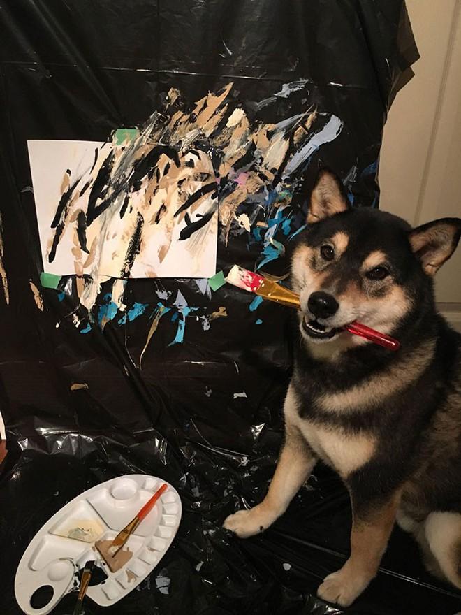 Chú chó shiba giúp chủ kiếm hơn 116 triệu đồng nhờ tài vẽ tranh trừu tượng - Ảnh 2.
