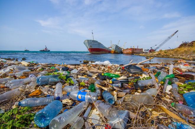 5 con số giúp bạn tóm tắt lại tình hình môi trường và y tế thế giới 2018 - Ảnh 4.