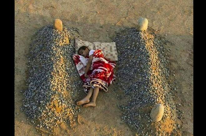 Bạn có thể cầm lòng trước hình ảnh đáng thương này?