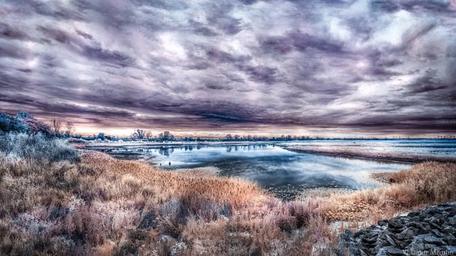 Một hồ ở khu vực Chernobyl. Mọi khung cảnh nơi đây đều có màu sắc dị thường qua góc nhìn của camera hồng ngoại.