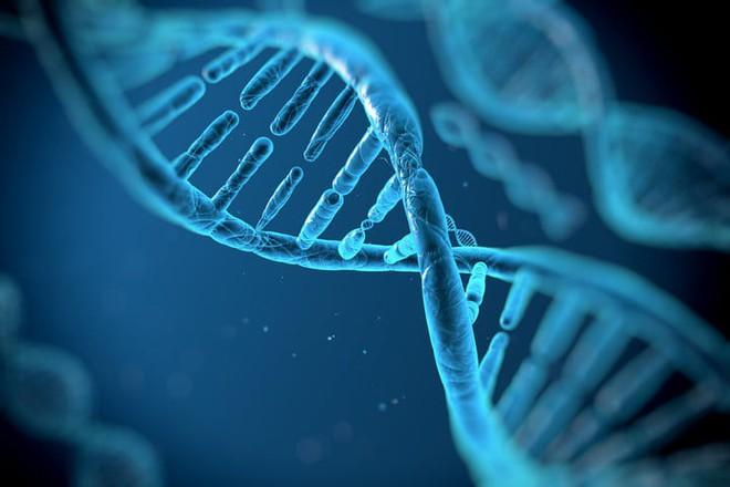 DNA có thể mang lượng lớn thông tin trong thời gian dài