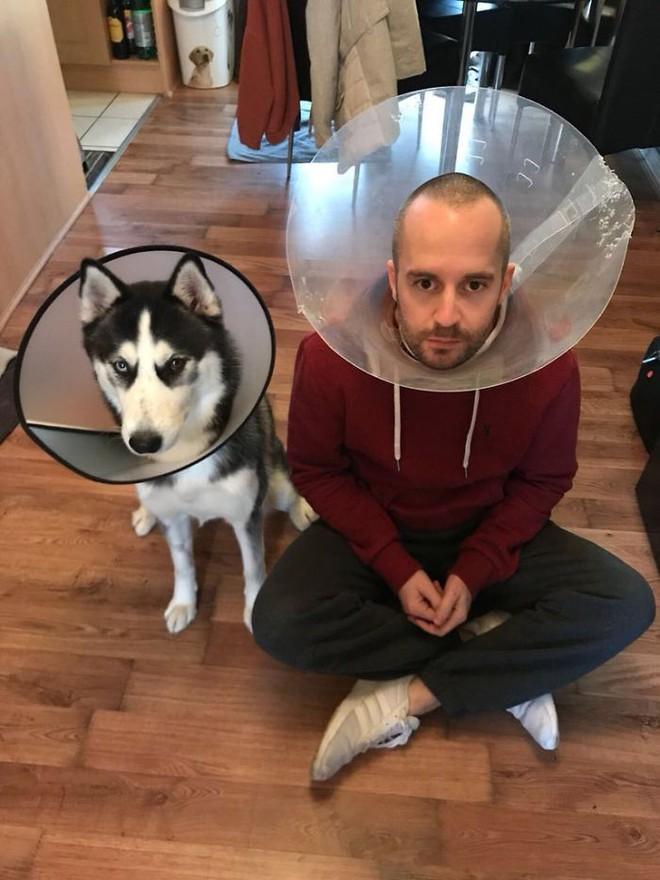 Trào lưu chủ nào chó nấy bất ngờ gây sốt trên Twitter vì quá dễ thương - Ảnh 4.