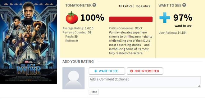Dù bị fan DC lăm le dìm hàng, Black Panther vẫn làm nên điều không tưởng: 100% đánh giá tích cực trên Rotten Tomatoes - Ảnh 1.